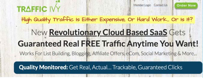 Affiliate Marketing Traffic Ivy Website Home Page